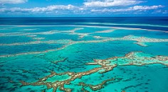 aerial photo of Great Barrier Reef, showing reef area with some blue water and slightly cloudy sky in background
