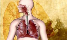 human lung illustration with World War II background