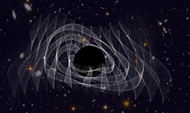 a single black rings after forming from the collision of two smaller black holes