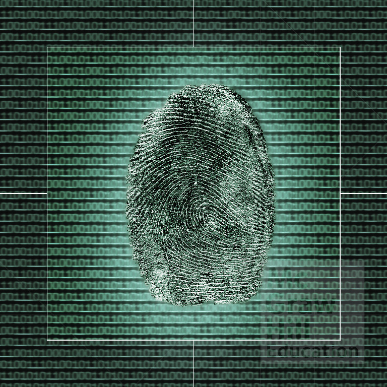 This is an illustration of a human finger print on top of some binary code