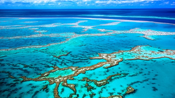 Aerial photo of the Great Barrier Reef; some blue water and slightly cloudy sky are seen in the background
