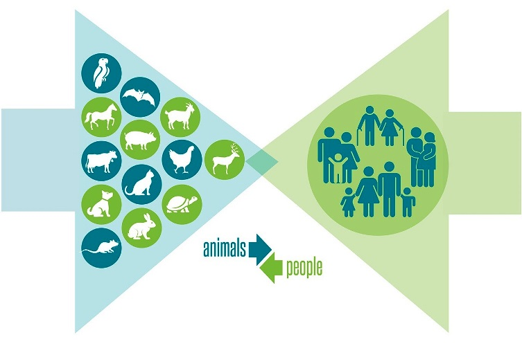 "Illustration of two large arrows pointing toward each other, with the left arrow containing silhouettes of various animals and the right arrow containing silhouettes of humans; an inset of two small facing arrows (labeled ""animals"" and ""people"") is also shown."