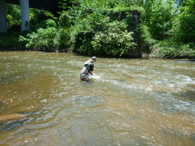 Photo of a scientist collecting a water sample from a stream