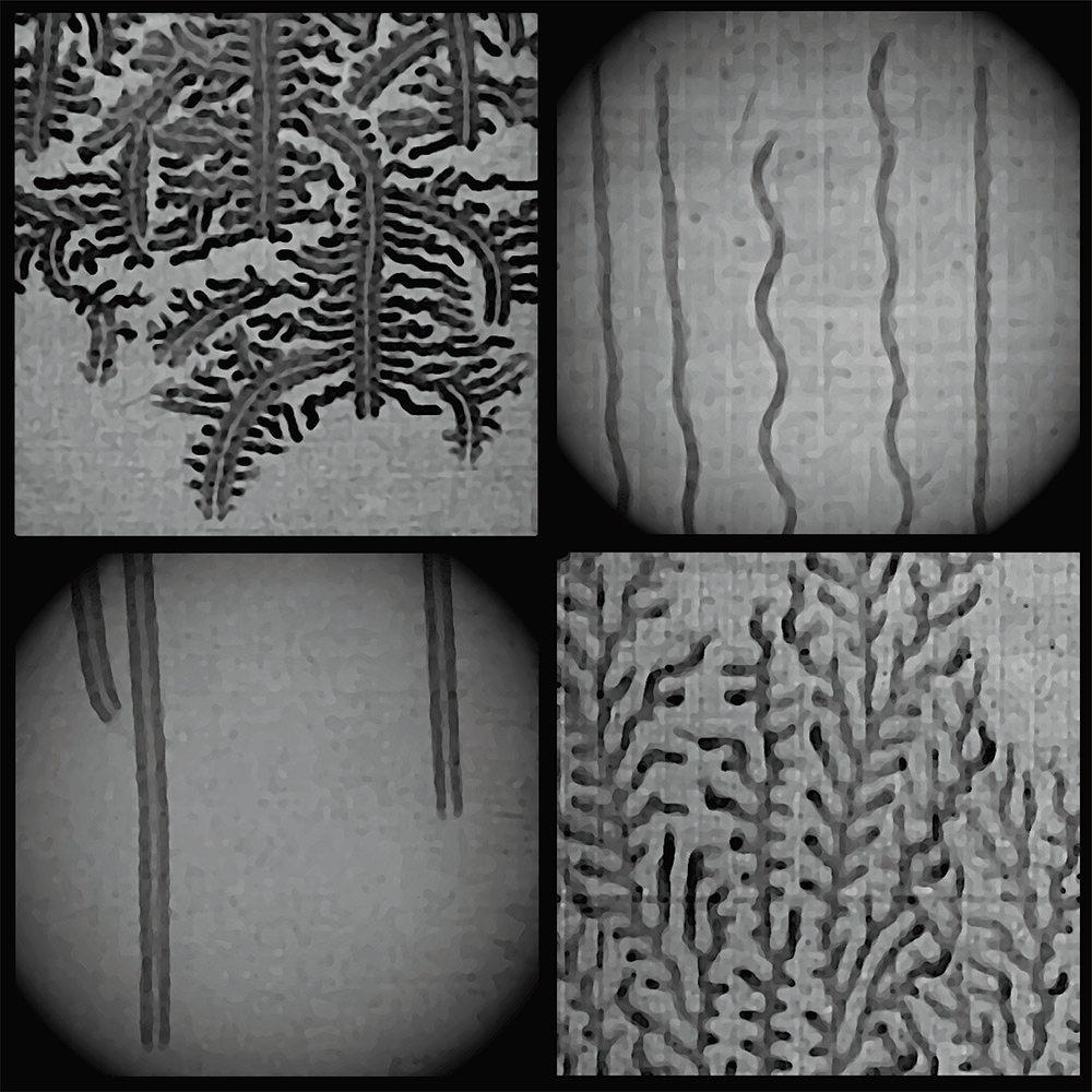 Four images in grescale color that show the water condensation trails left by hydrogen-burning flames propagating through a mixture of hydrogen gas and air in a narrow combustion chamber. The trails appear dark, whereas the light-colored portions of the imaged areas indicate unburnt hydrogen. In two examples—at top right and lower left—the propagating flames form fractal-like patterns