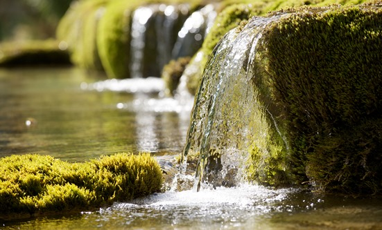 Color photo of clear water flowing over a green moss-covered rock