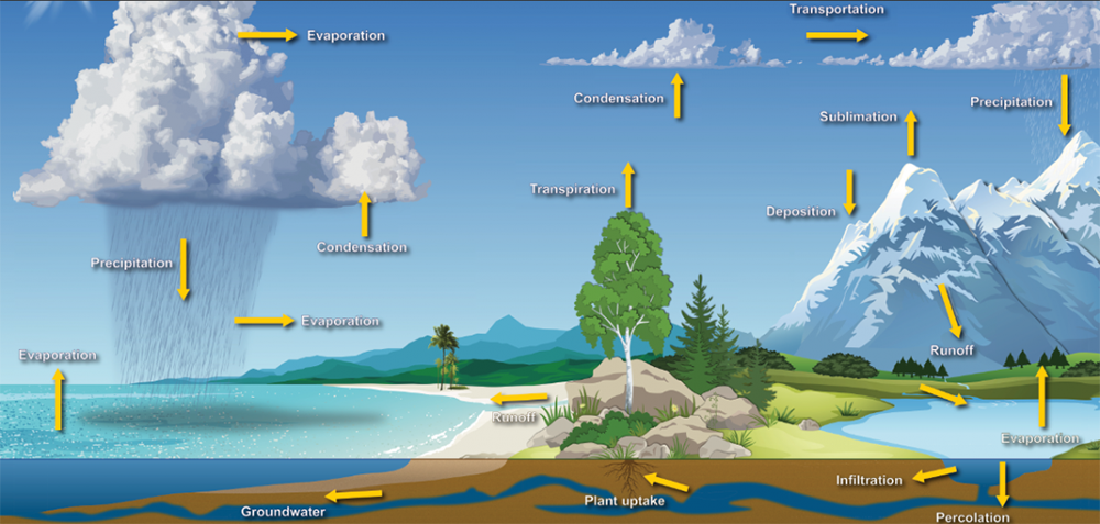 illustration of the water cycle